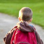 Backview of a boy